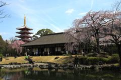 伝法院庭園特別拝観と大絵馬寺宝展の円成報告