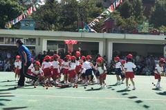 浅草寺幼稚園「よいこのうんどうかい」
