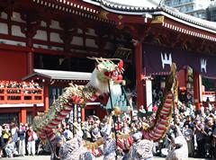 菊供養会の日、「金龍の舞」が奉演される。
